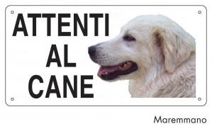 Attenti al cane Maremmano