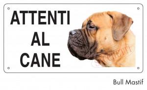 Attenti al cane Bull Mastiff
