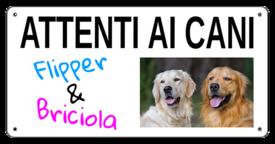 """AC019 - """"Attenti ai cani"""" con nomi personalizzabili"""